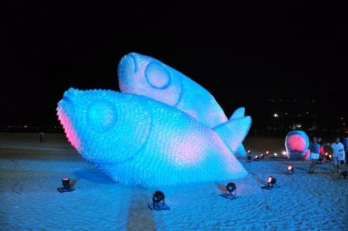 Pesci giganti avvistati sulla spiaggia di Rio