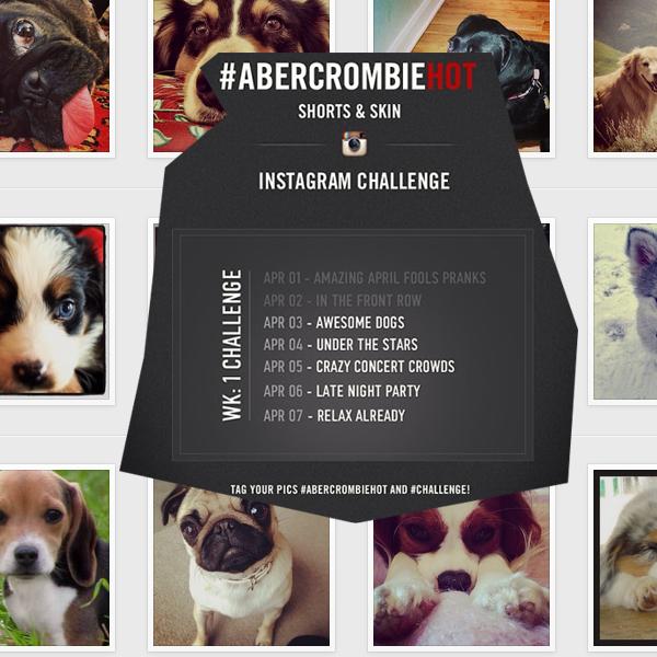 abercrombie_dog