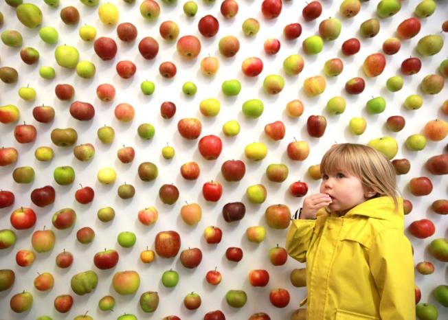 apple store bambino