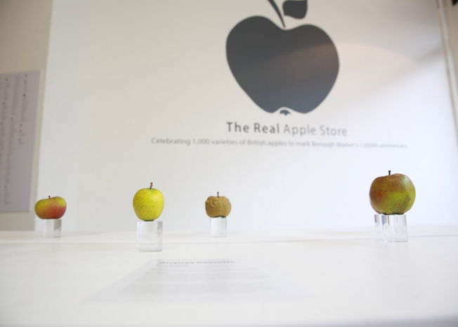 apple store reale