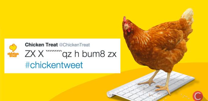 Betty, il primo pollo a twittare