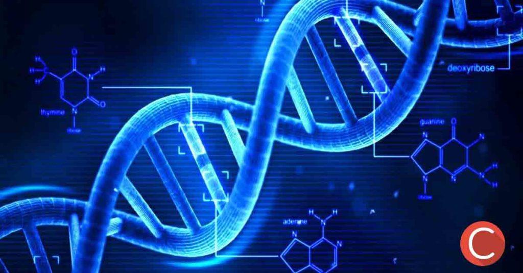 digital marketing marketing genetico